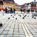 8 zen places in Brasov where you can work in peace